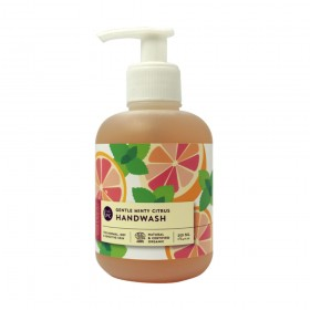 Anti-bac Gentle Hand Wash - Minty Citrus